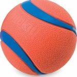 Chuckit! Ball Photo