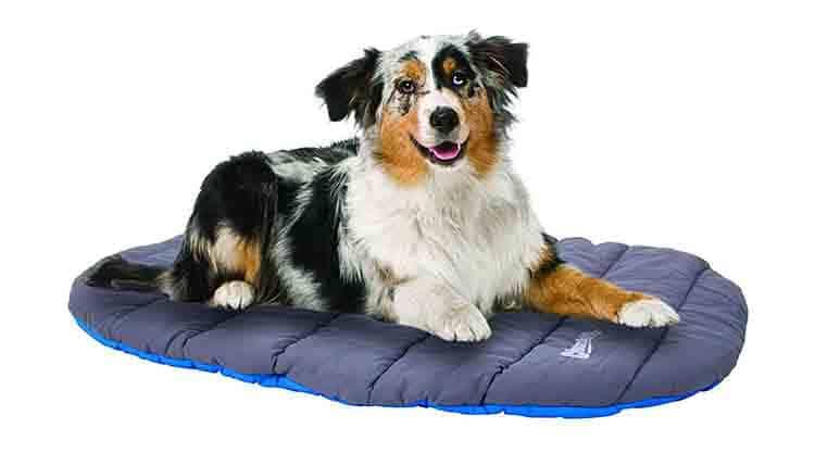 Chuckit! Travel Dog Bed Photo