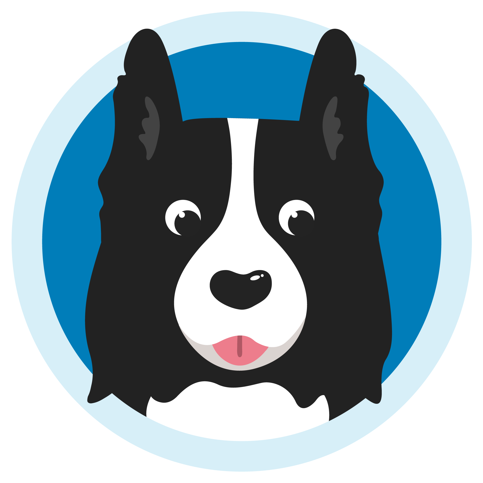 Naming Your Border Collie: Find the Perfect Name For Your