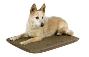 K&H Pet Products Lectro-Soft Heated Bed Photo
