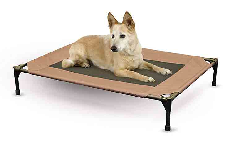 K&H Pet Products Original Pet Cot Photo