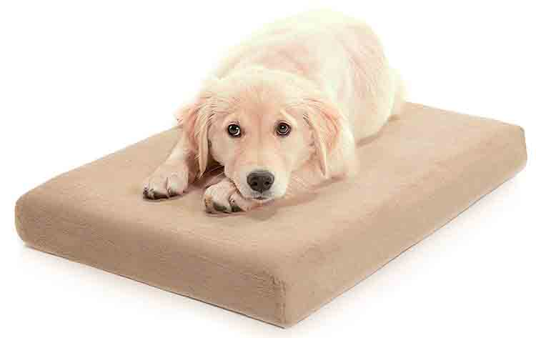 Milliard Premium Orthopedic Memory Foam Dog Bed Photo